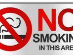 perokok-dampak.jpg