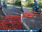 petani-tomat-kota-pagaralam-sumsel-buang-di-jalan.jpg