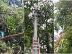 petugas-dari-pln-memangkas-ranting-pohon-yang-mengganggu-jaringan-listrik.jpg
