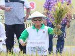 plh-walikota-palembang-harobin-mustofa-panen-raya_20180803_171720.jpg