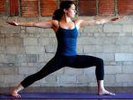 pose-yoga-warrior-ii_20180208_145252.jpg