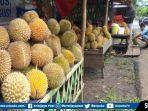 pusat-penjualan-buah-durian-di-kota-pagaralam.jpg