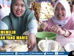 review-durian-susu-dan-mentega-asli-sumatera-selatan-ada-bocoran-tips-memilih-durian-yang-manis.jpg