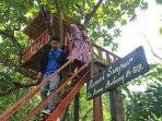 rumah-pohon-di-hutan-wisata-punti-kayu.jpg
