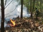 salah-satu-lokasi-hutan-industri-mhp-yang-terbakar.jpg