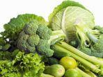 sayur-sayuran.jpg