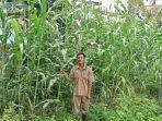 siswa-program-studi-agribisnis-ternak-unggas-atu-smk-pp-negeri-sembawa.jpg