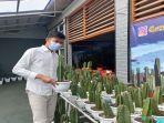 surga-kaktus-palembang.jpg