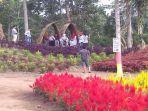 taman-bunga-bukit-mutiara-garden-ranau-oku-selatan.jpg
