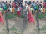ular-raksasa-di-oi.jpg