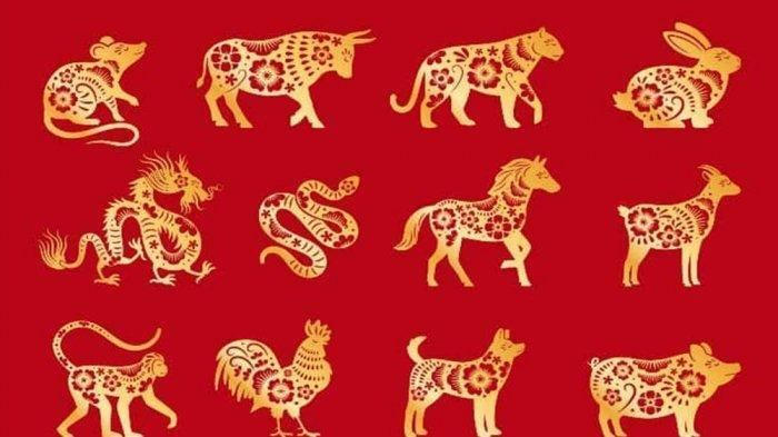 Ramalan Shio Besok, 25 Februari 2021: Shio Macan Percaya Dirilah, Shio Naga Jangan Ragu