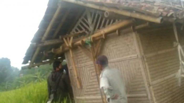 ABG Mesum di Gubuk Sawah Digerebek, Sudah Bugil dan Sedia Kondom