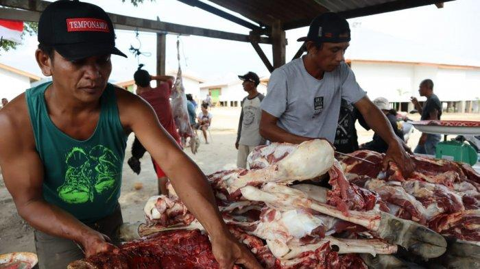 Sulteng Hari Ini: ACT Sulteng Bagikan Paket Daging Kurban untuk 700 Kepala Keluarga Area Pengungsi