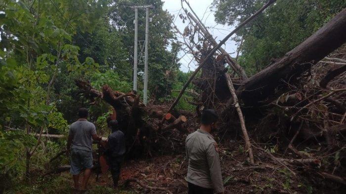 Longsor Tutup Jalan Trans Sulawesi di Banggai Hingga 22 Jam