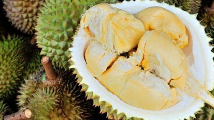 Manfaat Durian untuk Kesehatan: Mengurangi Risiko Kanker hingga Melawan Infeksi