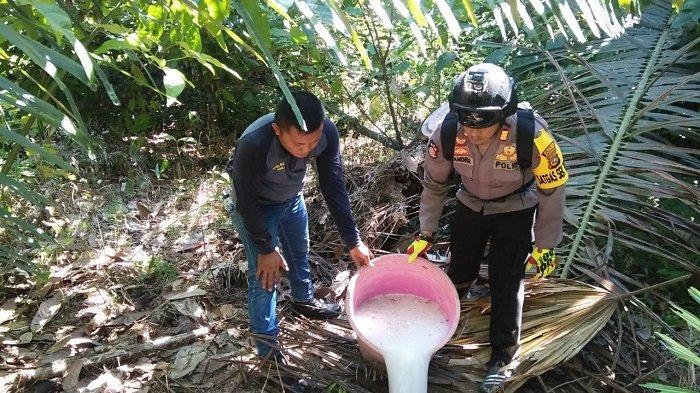 Razia Empat Pabrik Tradisional Di Banggai, Polisi Musnahkan Ribuan Liter Miras Jenis Cap Tikus