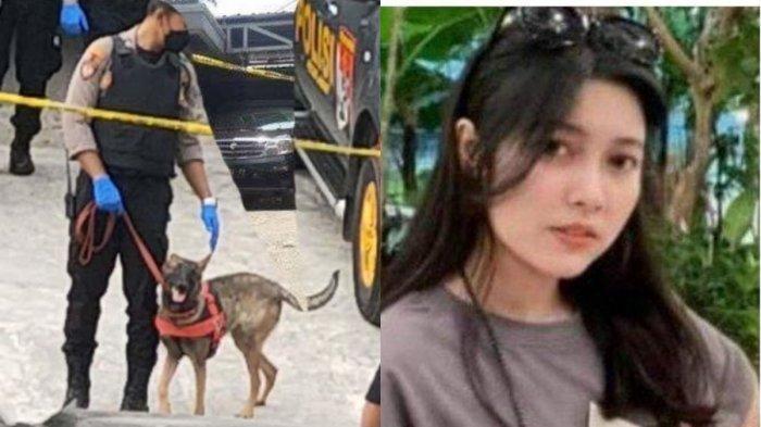DNA Pria Ini Diendus Anjing Pelacak dari Puntung Rokok, Akui Ketemu Amalia Malam Sebelum Dibunuh
