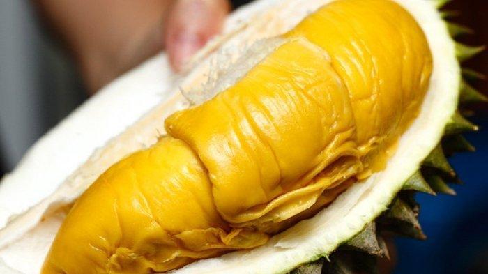 Wisatawan China di Malaysia Menurun Drastis, Harga Durian Musang King Anjlok hingga 50 Persen