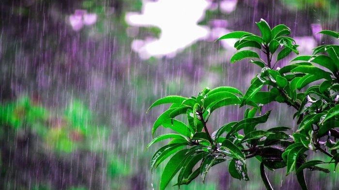 Prakiraan Cuaca 33 Kota Besar di Indonesia, Selasa (7/1//2020): Jakarta Hujan Sepanjang Hari