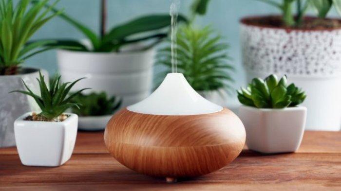 Benarkah Humidifier Bermanfaat untuk Kesehatan? Simak Penjelasan Berikut Ini