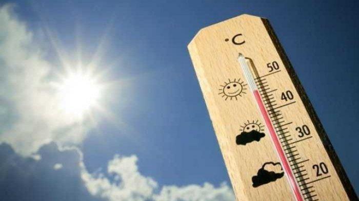 Laporan WMO: Suhu Bumi Semakin Panas, Diperkirakan Meningkat 1,5 Derajat Celsius Setiap Tahun