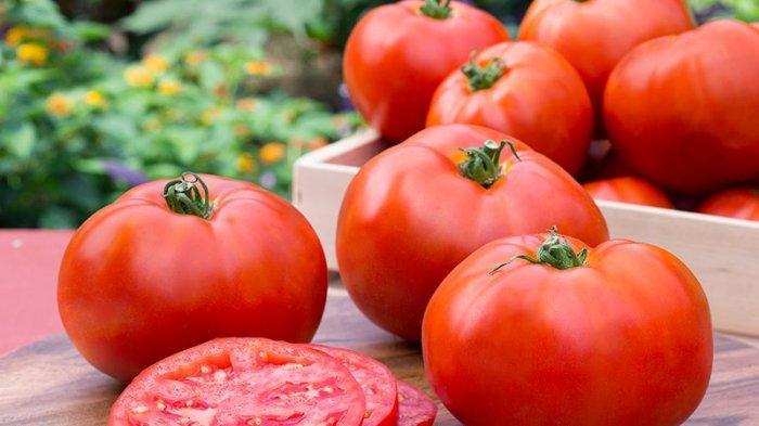 Tips Menanam Tomat Sederhana Hanya Menggunakan Pot, Cocok untuk Berkebun Skala Rumahan