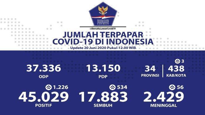 Rincian Data Virus Corona di Indonesia 20 Juni 2020: 45.029 Positif, 37.336 ODP, dan 13.150 PDP