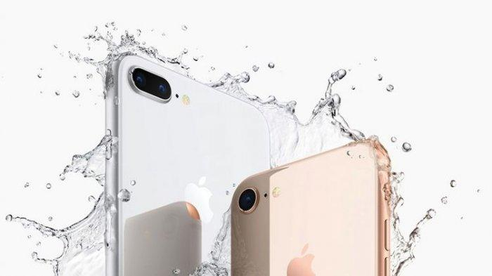 Daftar Harga HP iPhone Per Agustus 2020: Ini Harga Terbaru iPhone 7 Plus hingga iPhone 11 Pro Max
