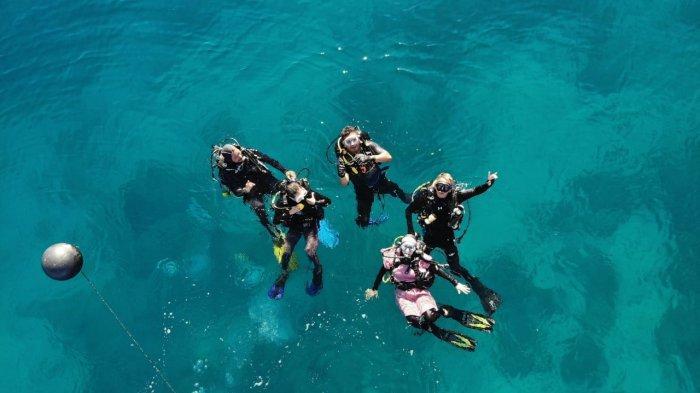 Tak Ditemukan di Daerah Lain, Banyak KeindahanAlam Bawah Laut di Pantai Lolaro Tinombo