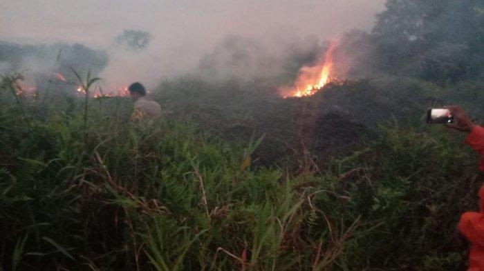 5 Kali Karhutla di Sulteng, Polda Minta Warga Tak Lakukan Aktivitas Pembakaran Selama Kemarau