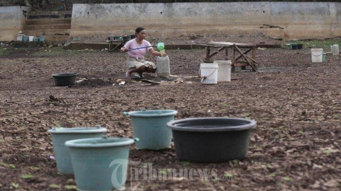 Kekeringan Semakin Meluas Pemerintah Gorontalo Tetapkan Status Darurat