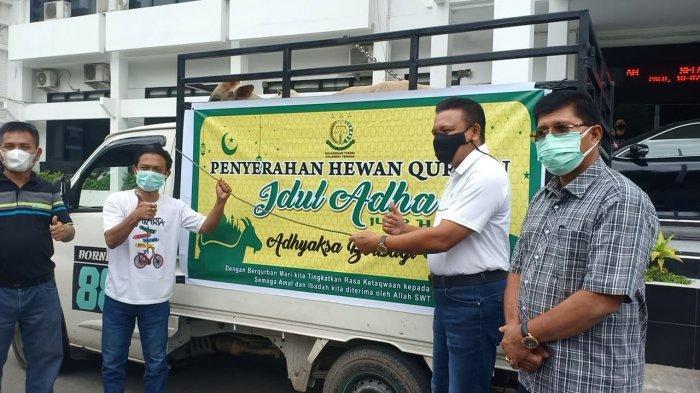 Kejati Sulteng Berikan 19 Ekor Sapi Kurban untuk Penyintas Bencana di Palu dan Sigi