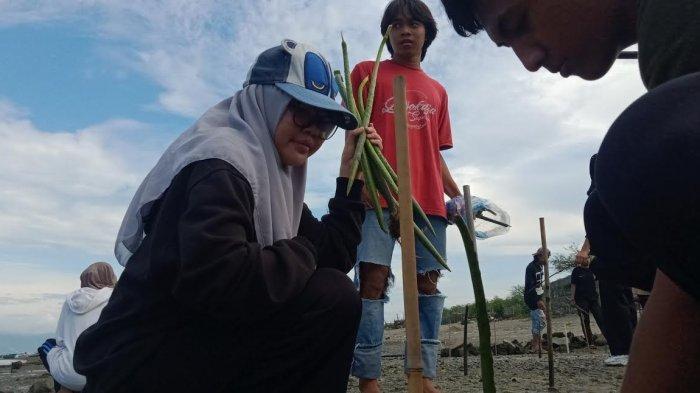 Gandeng Mangrovers, Komunitas Trash Volunteer Bersih-bersih Pantai di Palu