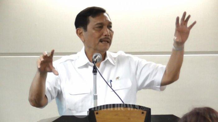 Luhut Binsar Pandjaitan Yakini 56 Persen Masyarakat Indonesia Tidak Akan Mudik saat Corona
