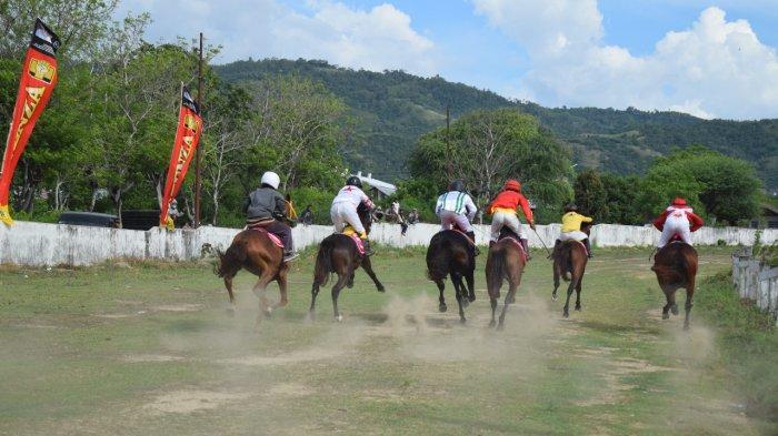Wali Kota Palu Janji Bangun Arena bagi Para Atlet Penunggang Kuda asal Kota Palu