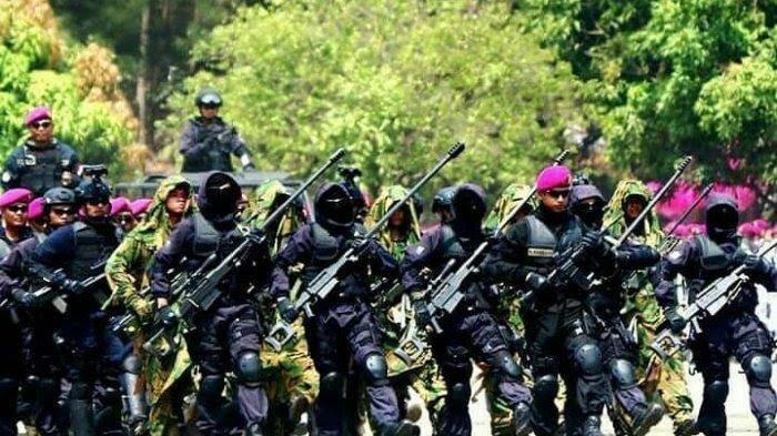 Denjaka Diisukan Sudah Mendarat di Papua Hadapi KKB, TNI AL: Mereka Itu Pasukan Siluman