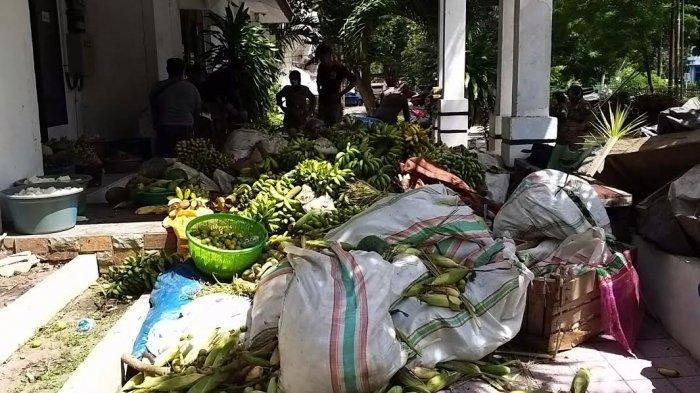 Puluhan Lapak di Jl Cempedak Palu Barat Digusur