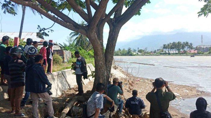 Warga yang Berdiri hingga Bibir Sungai Palu Jadi Kendala Utama Penyelamatan Buaya Berkalung Ban