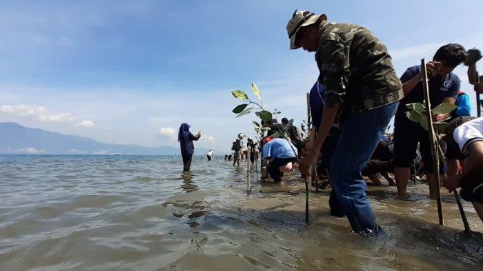 Mitigasi Bencana, Pesisir Pantai Kelurahan Mamboro Ditanami Ratusan Pohon Mangrove