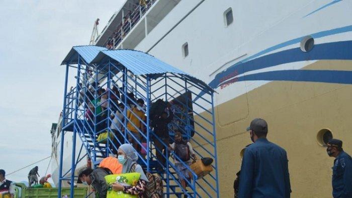 100 Penumpang Asal Indonesia Timur Tiba di Pelabuhan Pantoloan Palu, Pelni: Kedatangan Terakhir