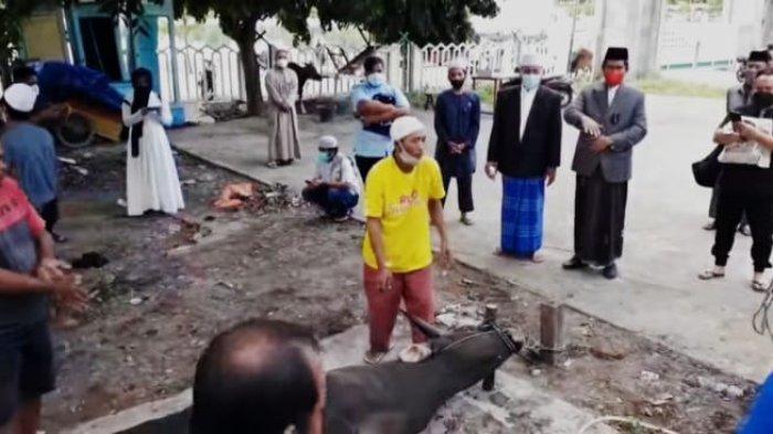 Masjid Agung Luwuk Sembelih 9 Ekor Sapi, Herwin Yatim: Seluruh Petugas Dites Swab