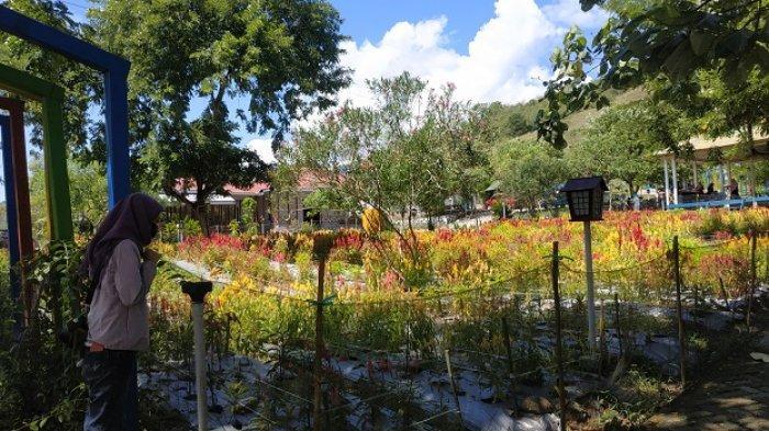 Hot Spring Bora, Terapi Air Panas dengan Nuansa Alam di Kaki Bukit Sigi - permandian-air-panas-bora-2.jpg