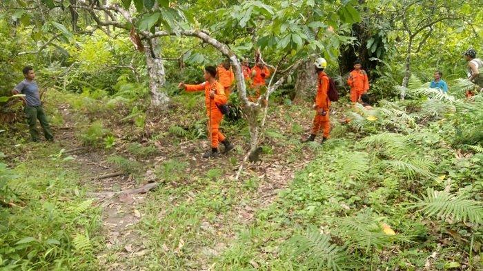 Tim SAR Lanjutkan Pencarian Petani yang Hilang di Kebun