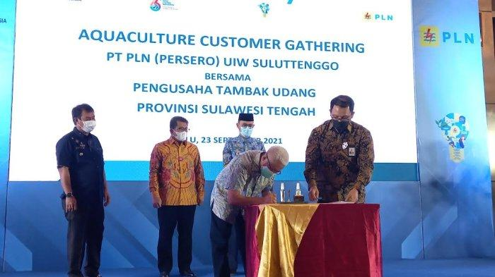 PLN Suluttenggo Suntik Listrik 65 MVA ke 5 Pengusaha Tambak Udang di Sulteng
