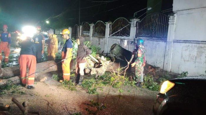 Hujan disertai angin kencang mengakibatkan pohon tumbang di Jl Masjid Raya, Kelurahan Lolu Utara, Kecamatan Palu Timur, Kota Palu Sulawesi Tengah, Sabtu (24/7/2021) sore.