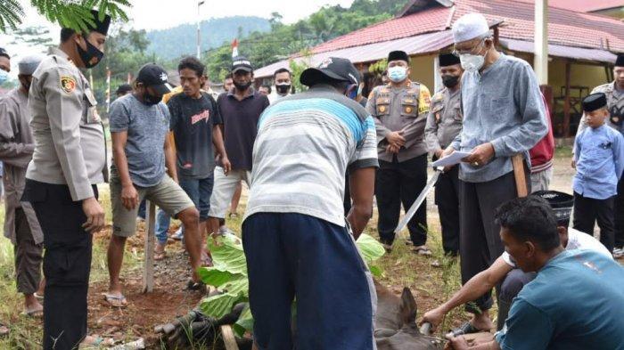 Polres Morowali Utara Bagikan 350 Kupon Daging Kurban untuk Warga