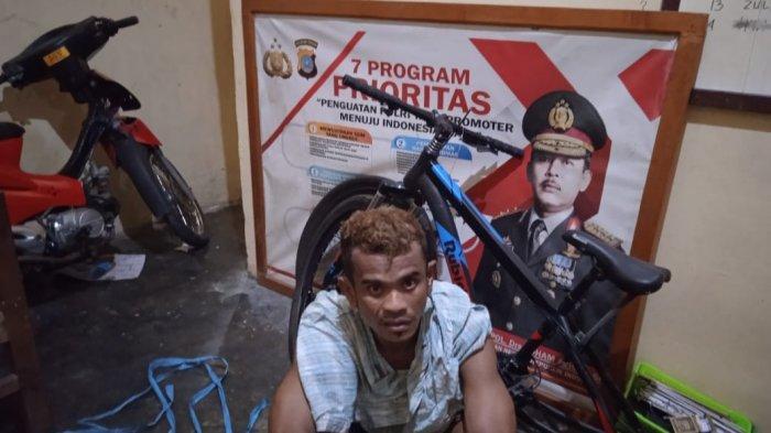 Kronologi Penangkapan Pencuri Kambing di Palu: Dikejar Masa dan Ketangkap saat Kecelakaan di Mamboro