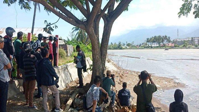 BKSDA Hentikan Sementara Proses Penyelamatan Buaya Berkalung Ban