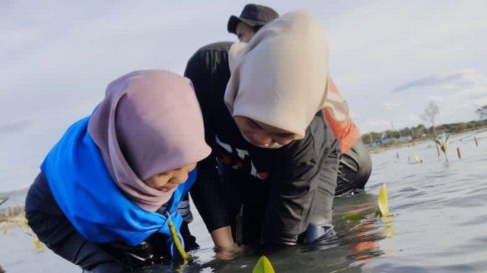 Pegiat Lingkungan Tanam 150 Mangrove di Pantai Teluk Palu