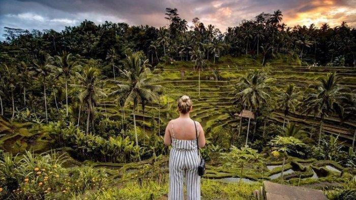 Larangan Mudik Diresmikan, Wacana Turis Asing Tetap Boleh Masuk, Pengamat: Pemerintah Harus Tegas